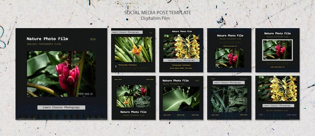 Post dei social media del modello di pellicola fotografica della natura Psd Gratuite