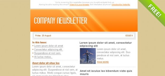 Orange Email Marketing Newsletter Template Psd File Free Download