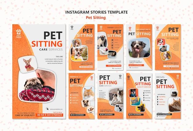 애완 동물 앉아 개념 Instagram 이야기 템플릿 프리미엄 PSD 파일