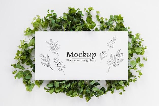カード付き植物配置モックアップ 無料 Psd