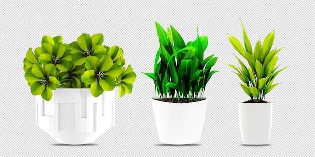 Растения в горшках в 3d визуализации Premium Psd