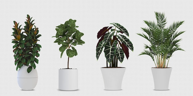 3dレンダリングされた鉢植えの植物 Premium Psd