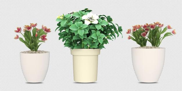 Растения в горшках в 3d-рендеринге изолированные Premium Psd