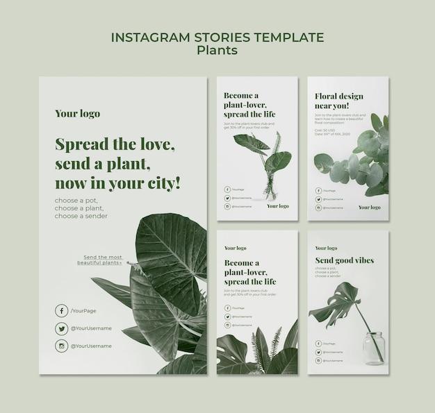 Растения instagram рассказы Бесплатные Psd