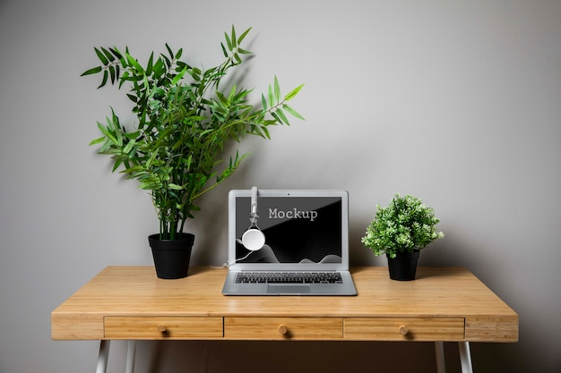 Plants and macbook mock-up Free Psd