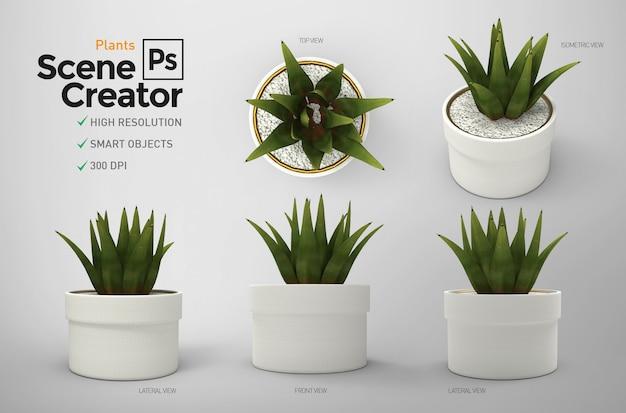 Plants. scene creator.   resource. Premium Psd