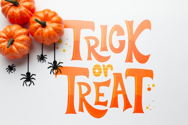 Pumpkins and spiders on halloween day Free Psd