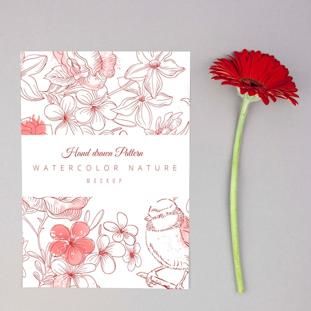 Red gerbera flower placed next to card mockup Free Psd