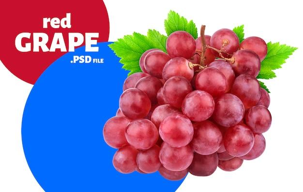 Красный виноград с листьями баннера Premium Psd