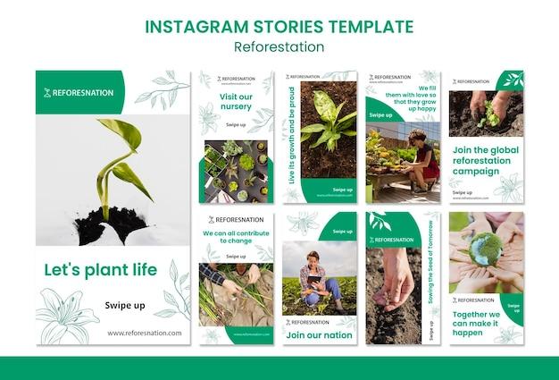 Modello di storie instagram di rimboschimento Psd Gratuite