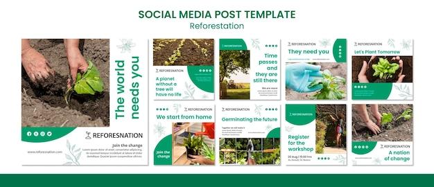 植林ソーシャルメディアの投稿テンプレート 無料 Psd