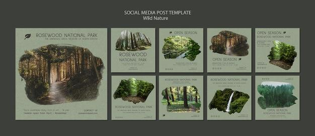 게시물 템플릿-로즈 우드 국립 공원 소셜 미디어 무료 PSD 파일