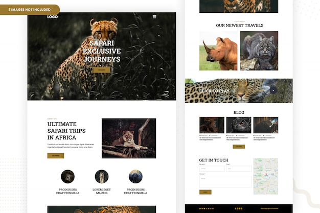 Safari trips in africa website page template Premium Psd