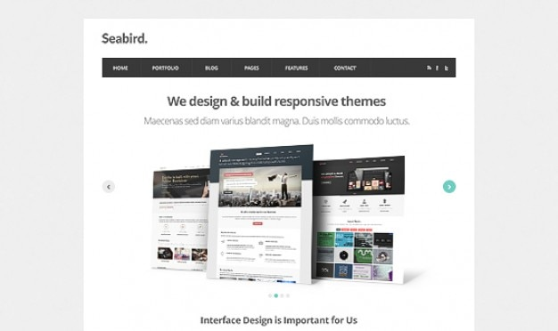 Seabird - Homepage HTML5 Template PSD Free Psd