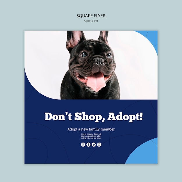 Don't shop, adopt a pet square flyer template Free Psd