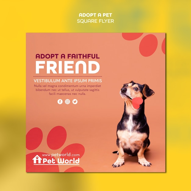 Squared flyer for pet adoption with dog Free Psd