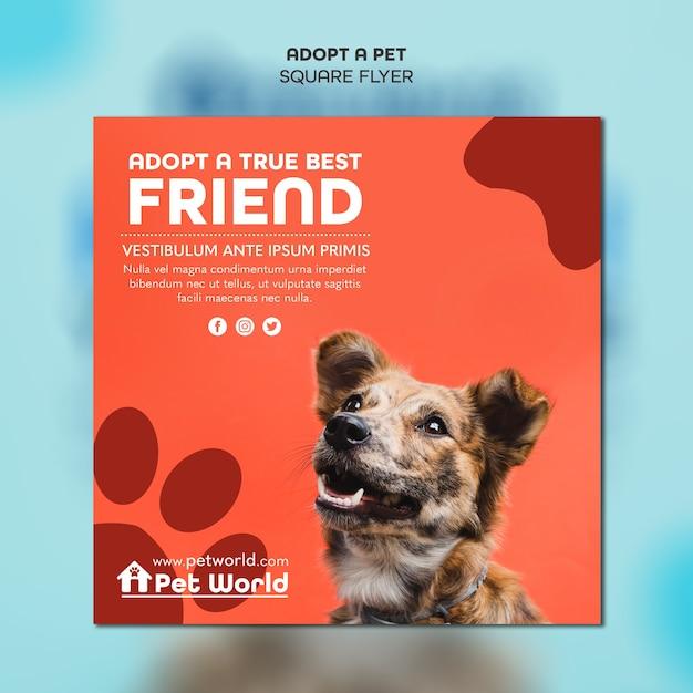 Dof와 애완 동물 입양에 대 한 제곱 된 전단지 서식 파일 무료 PSD 파일