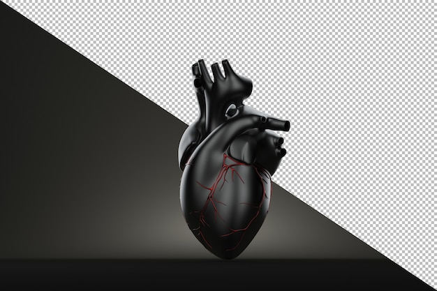 Still life human heart on black background Premium Psd