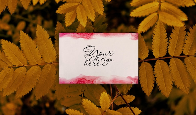Summer blank branding mockup  on autumn leaves background Premium Psd
