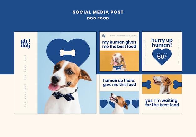 개밥과 소셜 미디어 게시물을위한 템플릿 무료 PSD 파일