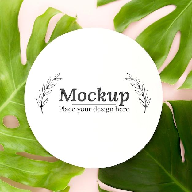 モックアップと緑の葉の上面構成 無料 Psd