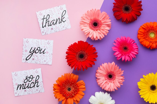 Top view of flowers and letters on pink and purple background Free Psd
