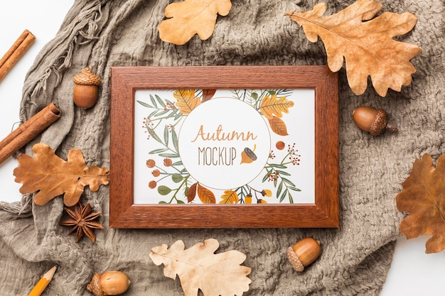 Top view frame and acorns Free Psd