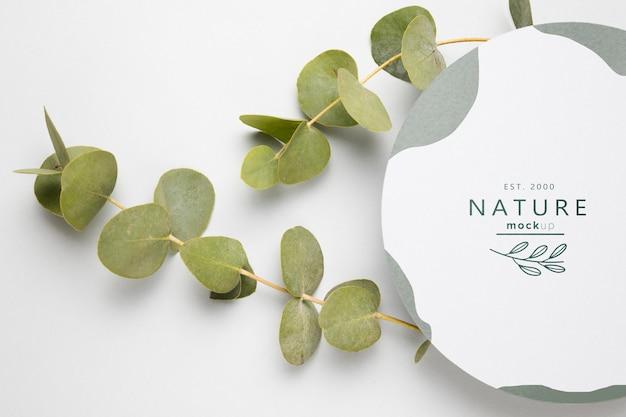 Vista dall'alto foglie verdi con mock-up Psd Gratuite