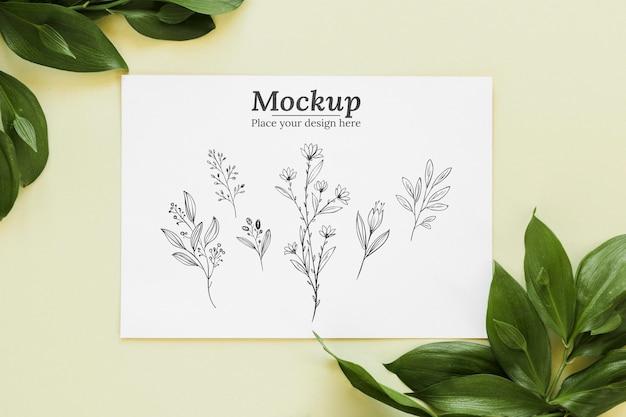 上面図の葉とカードの配置 無料 Psd