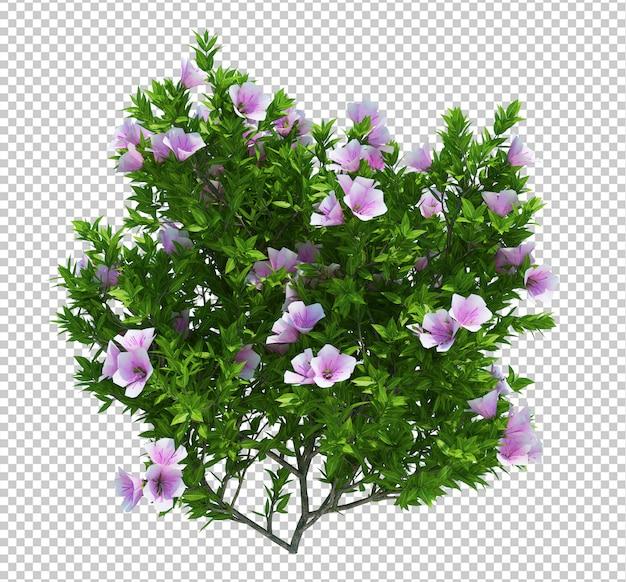 分離された花の木 Premium Psd