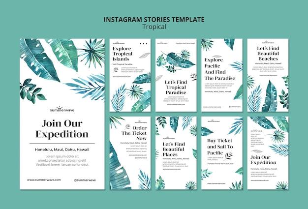 Шаблон историй instagram в тропическом стиле Бесплатные Psd