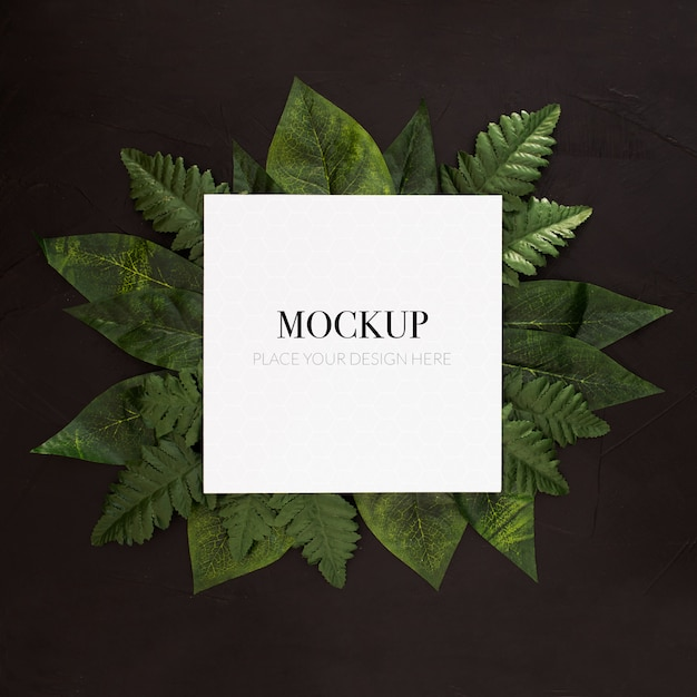 Tropical plants with frame mockup on black background Free Psd