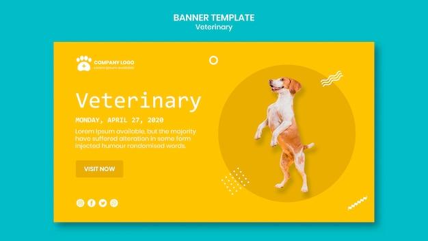 귀여운 강아지와 수의 배너 서식 파일 무료 PSD 파일