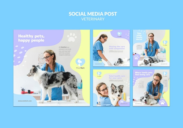 Veterinary clinic instagram posts template Free Psd