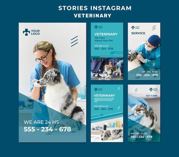 Шаблон рассказов ветеринарной клиники instagram Бесплатные Psd