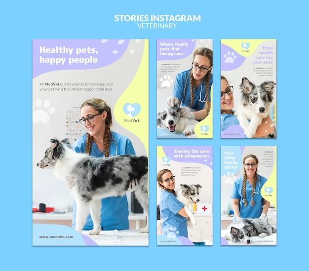 Шаблон рассказов ветеринарной клиники instagram Premium Psd