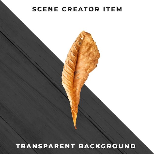 Wood leaf transparent psd Free Psd