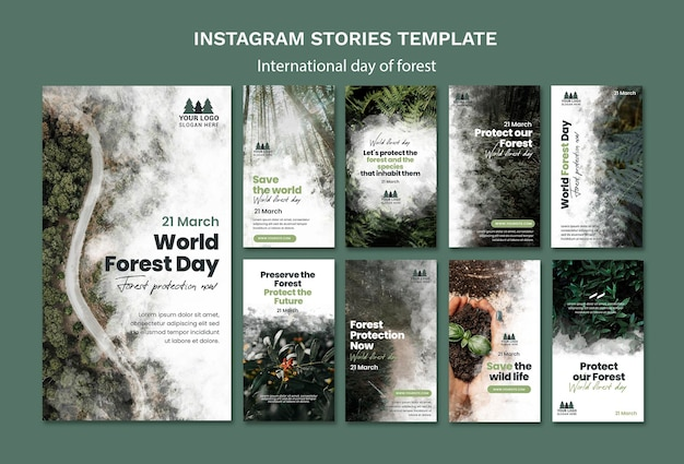 World forest day instagram stories template Premium Psd