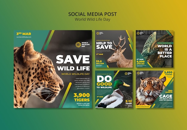 World wild life day instagram posts template Free Psd