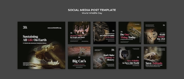 세계 야생 동물의 날 소셜 미디어 게시물 템플릿 무료 PSD 파일