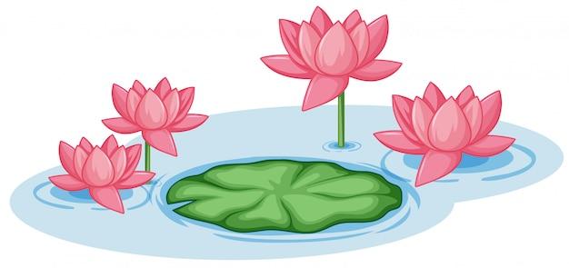 池の1つの緑の葉とピンクの蓮の花 Premiumベクター