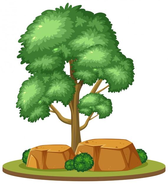 白い背景の上の1つの大きな木 Premiumベクター