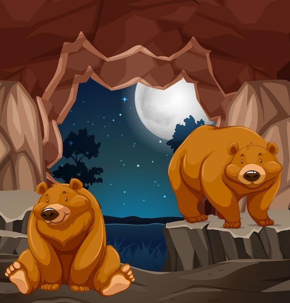洞穴に2頭の褐色のクマ 無料ベクター