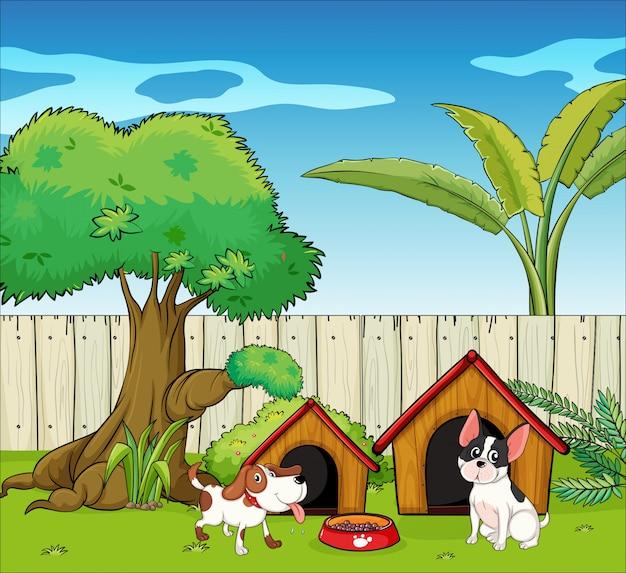 フェンスの中の2匹の犬 無料ベクター