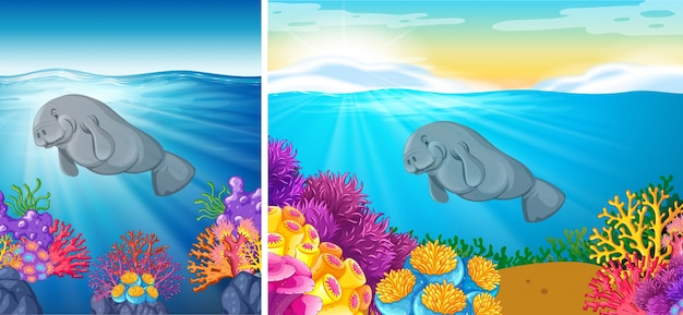 海の下で泳ぐマナティーの2つの場面 Premiumベクター