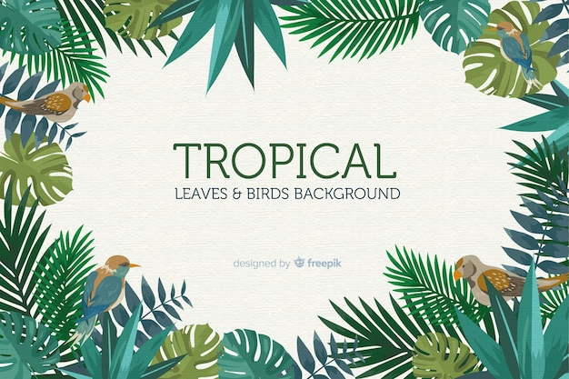 Premium Vector 2d Tropical Leaves And Birds Background Freepik free vectors, photos and psd freepik online editor edit your freepik templates slidesgo free templates for presentations stories free editable illustrations. https www freepik com profile preagreement getstarted 4256948