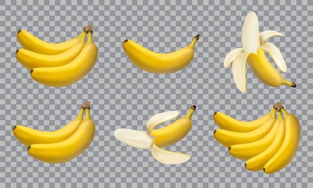 リアルなイラストのバナナ、3 dのベクトルのアイコンのセット Premiumベクター