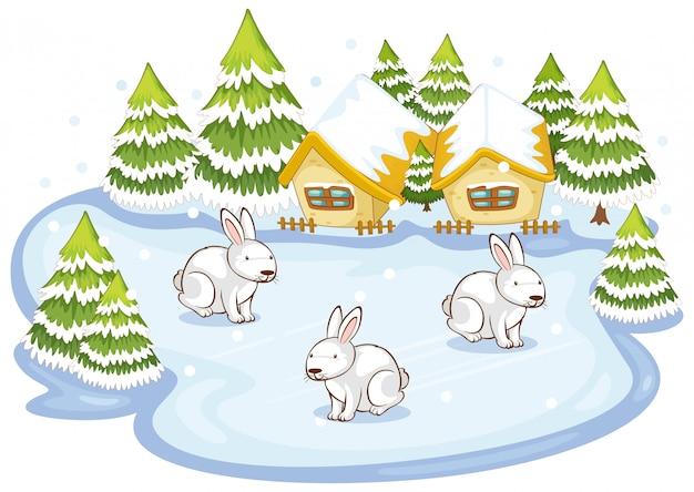 雪原で3匹のウサギとのシーン 無料ベクター