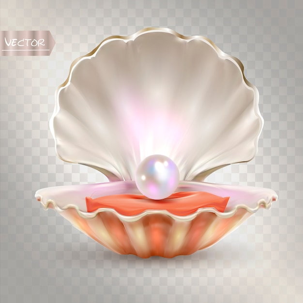3d opened shell with shining pearl inside. Premium Vector
