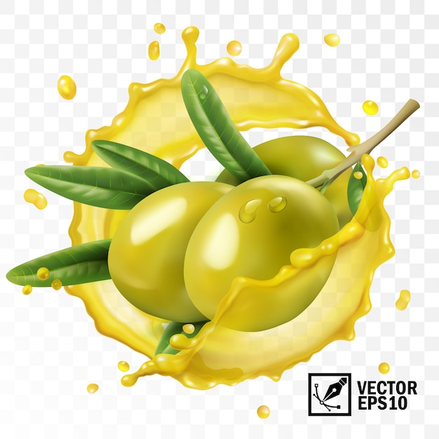 3d realistic isolated transparent splash of olive oil with a branch of olive fruits with leaves Premium Vector